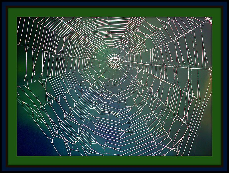 Web color with frame