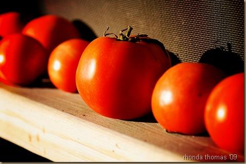 Tomato 2 jpg