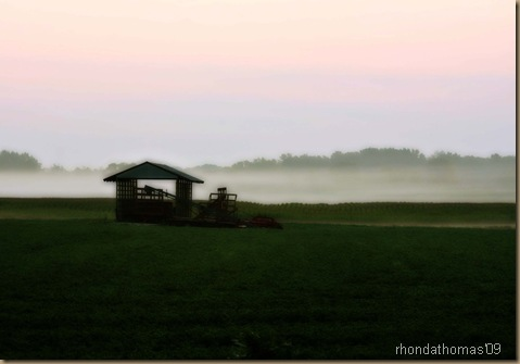1 One autumn morning