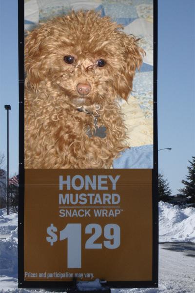 Honey_mustard